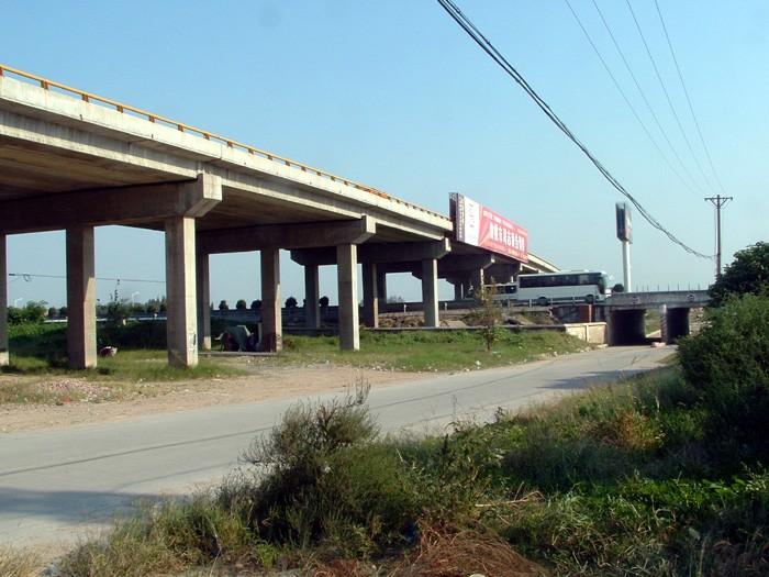 和平高架桥